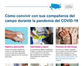 How to Share Housing With Other Field Workers During the COVID-19 Pandemic — Spanish